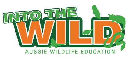 Into The Wild Education
